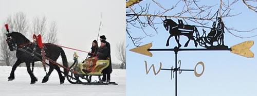 Windwijzer arreslee met paard