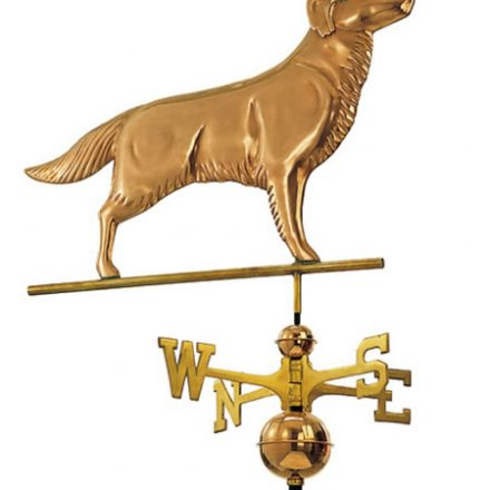 3D-design windwijzer Golden Retriever | allewindwijzers.nl