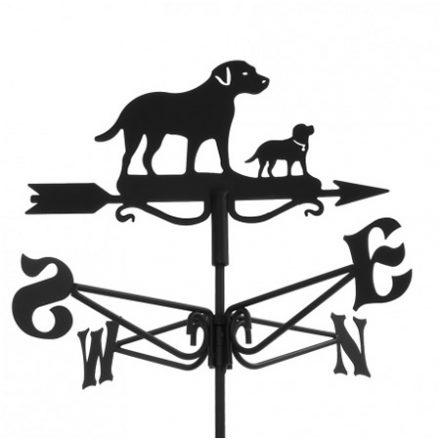 Windwijzer labrador met puppy hond