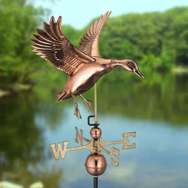 windwijzer-landende-eend-sfeer