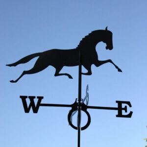 Windwijzer-Paard-W6066