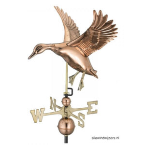 windwijzer-landende-eend-W3605