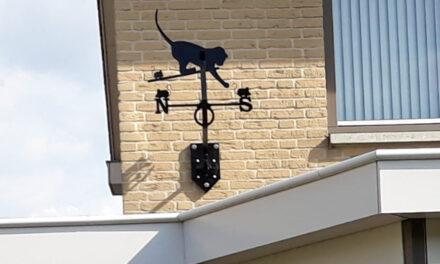 Windwijzer kat met muizen in Katwijk